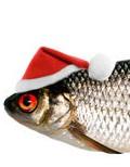 santahatonfish
