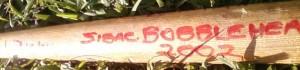 bobblehead bat